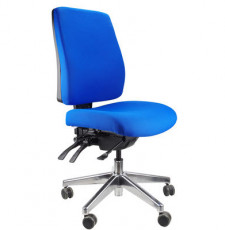 Ergoform Task Chair Medium Back