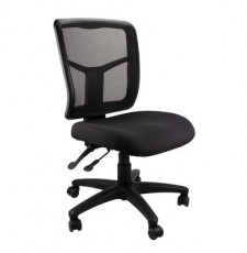 Kimberley Task Chair Medium Mesh Back